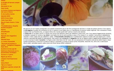 Home kitchen garden,  mangiarebene.com, 12.05.2016
