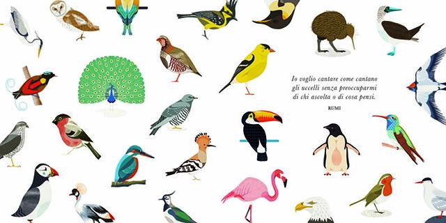 Piccola guida agli uccelli 1