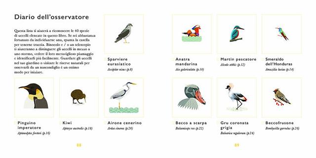 Piccola guida agli uccelli 2