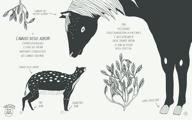 il piccolo libro degli animali del mondo antico 3